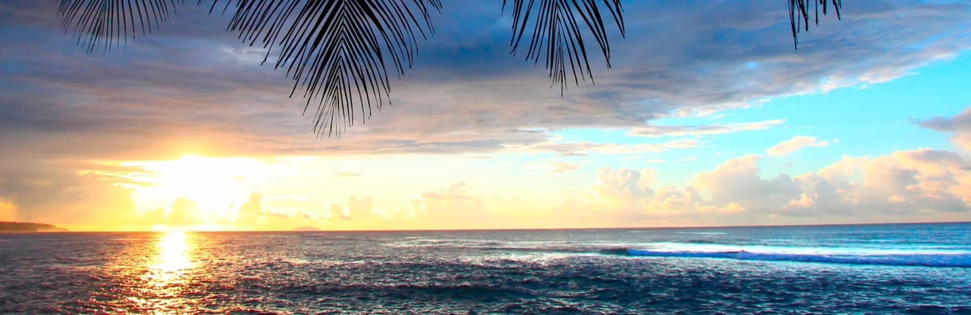Promoción de Verano - Tropical Inns